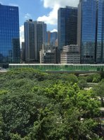 麗港城四期兩新裝園景