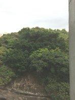 麗港城三期2房東南山景
